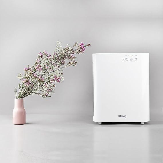 H. Koenig air800 purificador de aire PureAir Plus: Amazon.es: Hogar