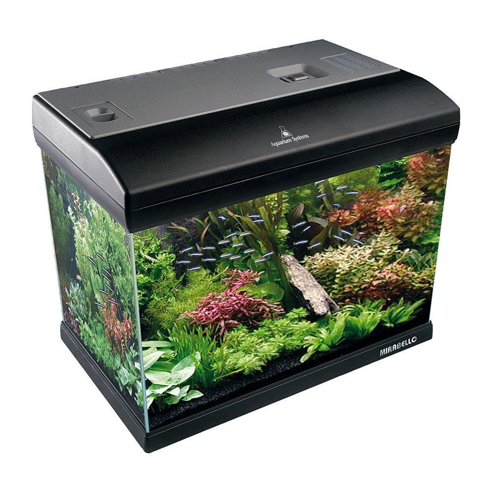 Aquarium System, Mirabello 70 Acquario 61x31x48h cm, 75 Litri, con filtro, luce con timer e accessori Newa