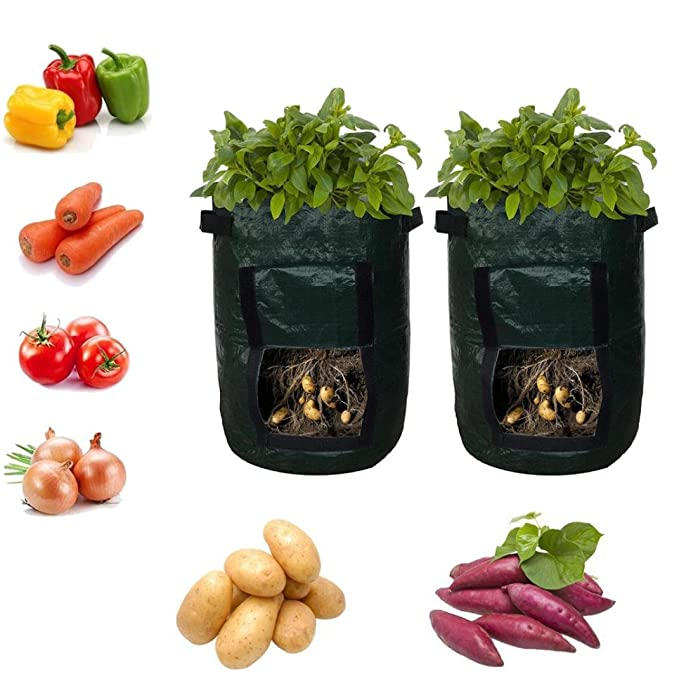 Amazon.com: 2PC Potato Grow Bags,DIY Grow Planter Bag PE Cloth Planting Container Bag (Green): Clothing