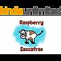 Raspberry Sassafras