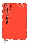 川と国土の危機 水害と社会 (岩波新書)