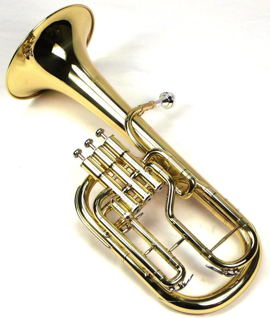 Intermediate Monel Pistons Alto Horn w/Case & Mouthpiece-Gold Lacquer Finish by Moz (Image #5)