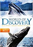 World Of Discovery: Blue Whale - Largest Animal on Earth