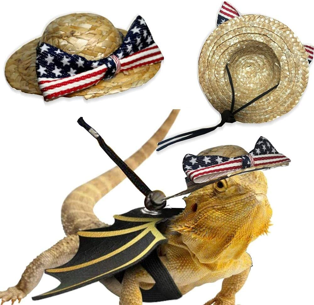 Adjustable Lizard Harness 7 Pack Bearded Dragon Leash and Belt Hammock National Flag Hat for Amphibian and Other Small Pet Reptile