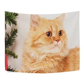 Carcasa naranja gato persa Big Face poliéster decoración del hogar tapices tapices de pared tamaño completo