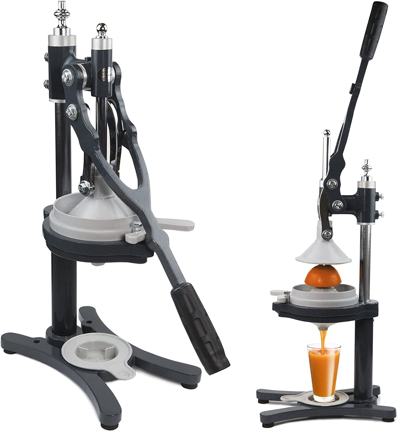 Best Hand Press Juicer 2021 Review