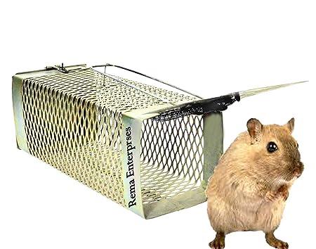 ASTRO HUB Iron Rat Trap Cage (Big Size)