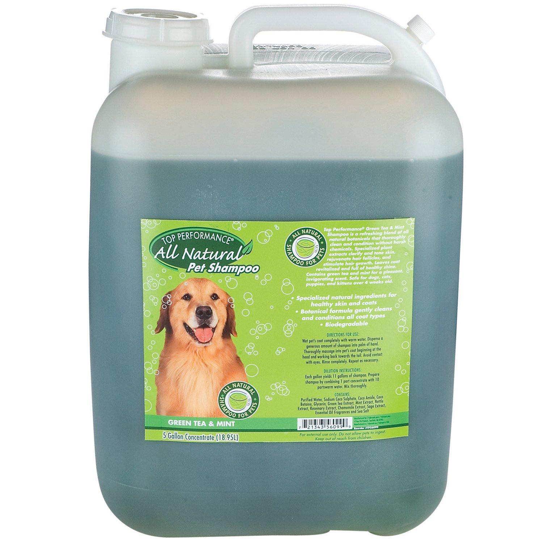 Top Performance Green Tea/Mint Dog and Cat Shampoo, 5-Gallon