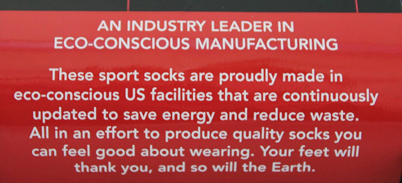 10 Pairs White No Show Socks for Men
