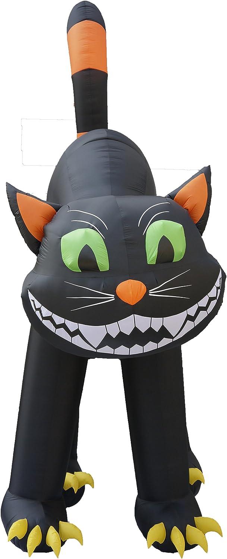 20 Foot Animated Halloween Inflatable Black Cat 71iPgduBTnLSL1500_