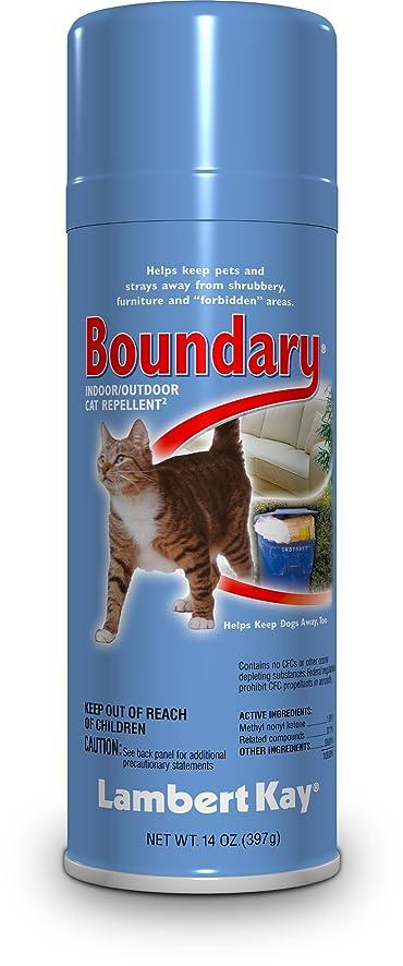 Delightful Lambert Kay Boundary Indoor/Outdoor Cat Repellent Aerosol Spray, 14 Ounce