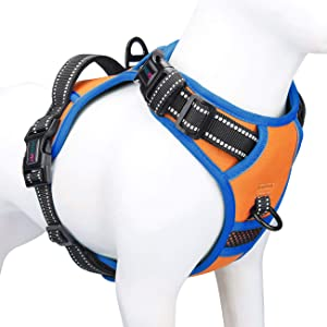 PHOEPET 2019 Upgraded No Pull Dog Harness, Unique Colors Reflective Adjustable Vest, with a Training Handle + 2 Metal Leash Hooks+ 3 Snap Buckles +4 Slide Buckles [Easy to Put on & Take Off]