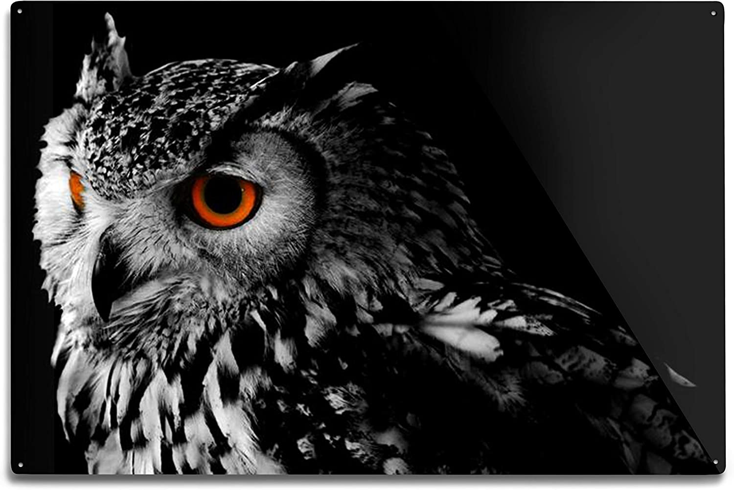 Lantern Press Bengali Eagle Owl Portrait in Black & White with Red Eyes A-9004493 (12x18 Aluminum Wall Sign, Metal Wall Decor)