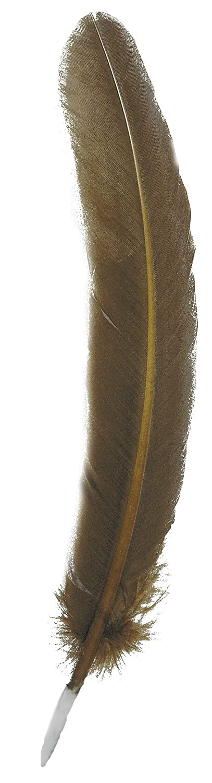 Herbin 23101T Strumenti per Scrittura, Bianco, 4.5 x 28 x 0.1 cm