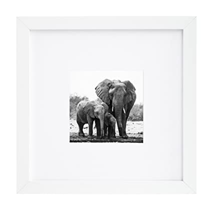 Amazon.com - 8x8 White Picture Frame - Matted to Fit Pictures 4x4 ...