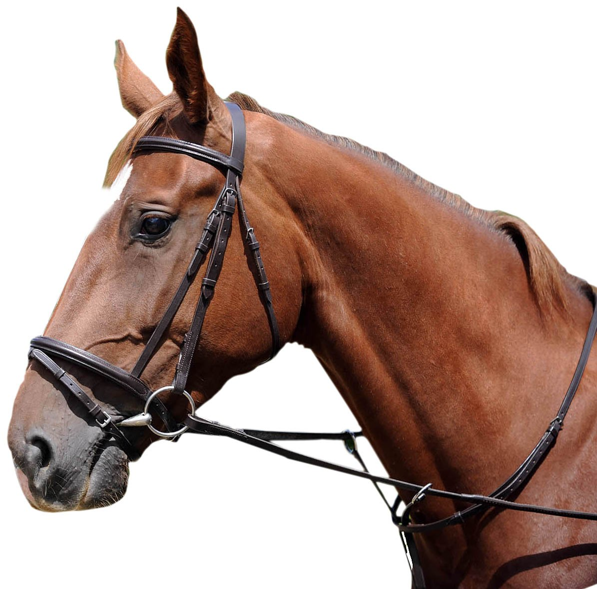 John Whitaker IFB Bridle - Light Havana, Cob JWHELE23