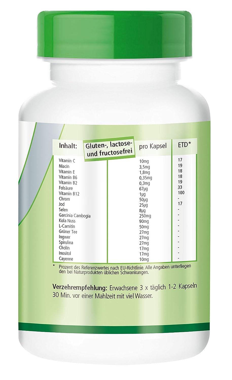System Six - para 20 días - VEGANO - 120 cápsulas - con Garcinia cambogia, cromo, L-carnitina, Vitaminas, minerales y más: Amazon.es: Salud y cuidado ...