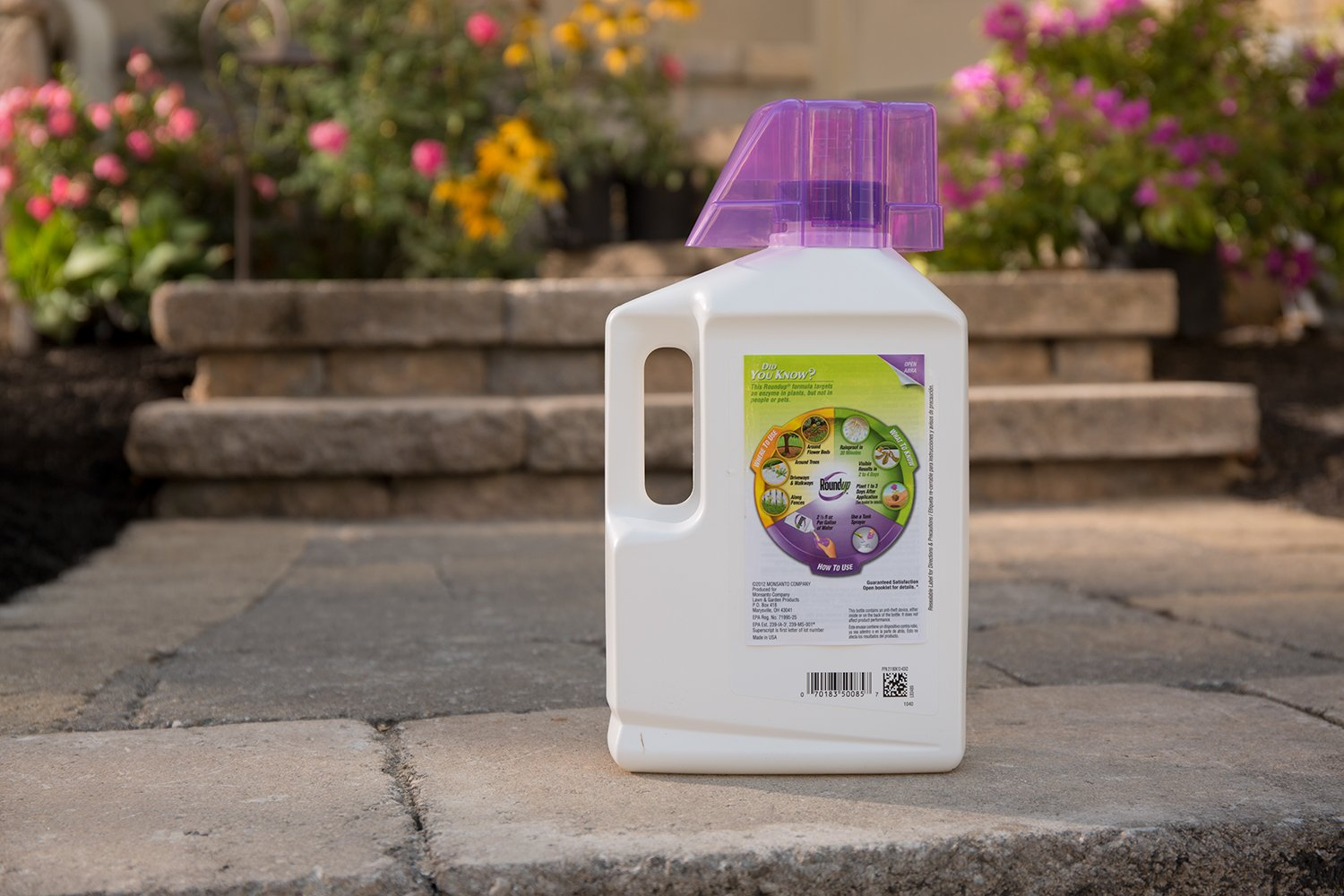 Roundup Weed and Grass Killer Super Concentrate