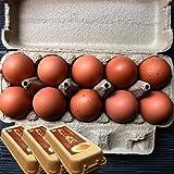 【普段使いにおススメ】櫛田養鶏場のおいしい赤卵【30個入り(27個+3個破卵保障)】餌にこだわった超新鮮たまごを養鶏場から直送!