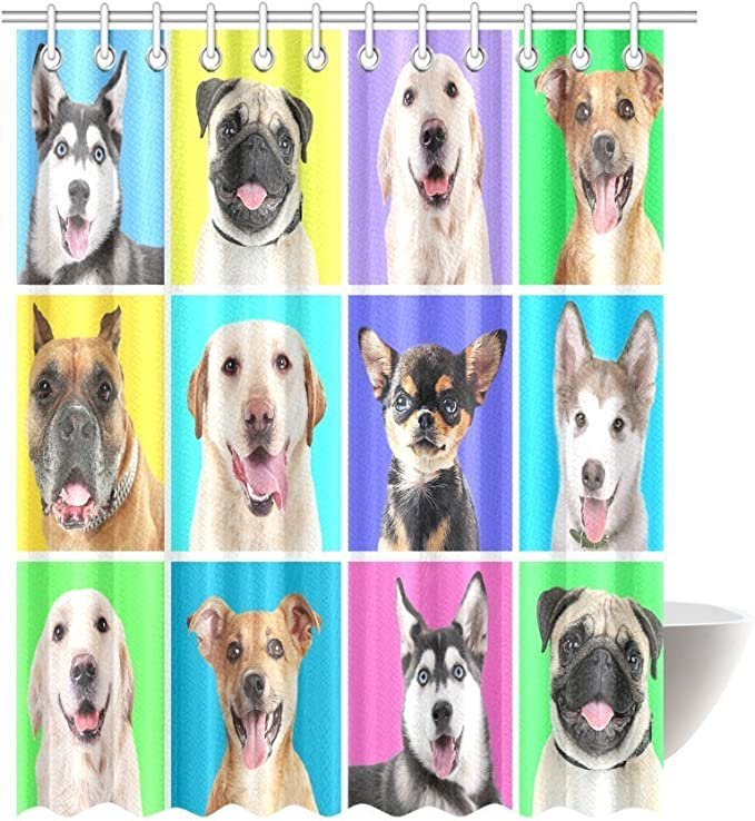Interestprint Portraits Of Cute Dog Breeds On Colorful Backgrounds Profiles Pets Shepherd Terrier Labrador Domestic Animals Illustration Fabric Bathroom Shower Curtain Set 69 X 84 Inches Home Kitchen Amazon Com