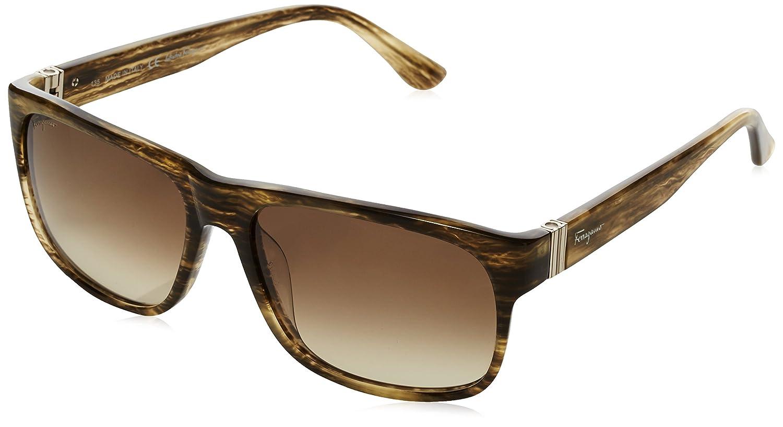 salvatore ferragamo damen sf639s rechteckig sonnenbrille polarisiert ebay. Black Bedroom Furniture Sets. Home Design Ideas