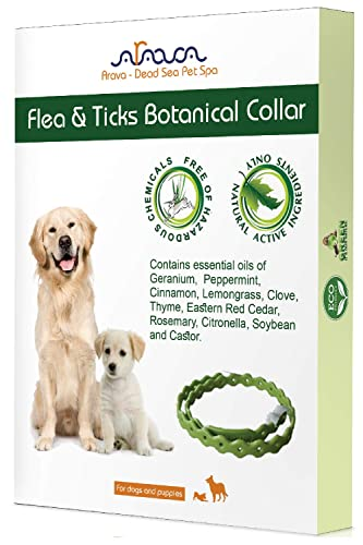 Arava Flea & Tick Prevention Collar Review