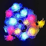 CrazyFire イルミネーション ストレート 5m LED20灯 クリスマス ライト LED 防水 防雨仕様 屋外 LED ドロープライトフォールライト ガーデンライト/ ライト / 防雨 / 電飾 / 電球 / 装飾 / 照明 /クリスマスツリー (ローズ, 多色)
