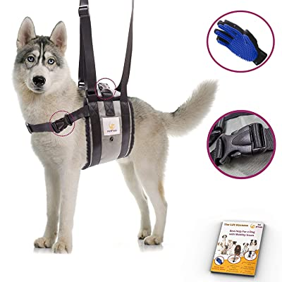 PET FRIENDZ Veterinarian Approved Dog Support Harness + Hair Remover Glove