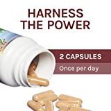 Host Defense, Reishi Capsules, Supports General
