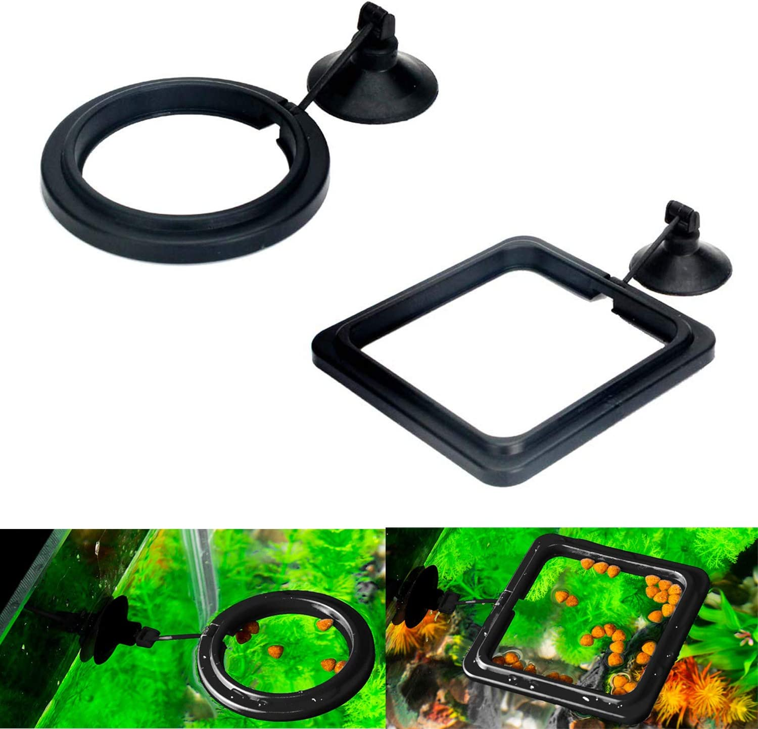 Maxmoral 2pcs Black Fish Feeding Ring Aquarium Fish Tank Mariculture Fishes Floating Food Feeder Circle with Suction Cup(Round and Square)