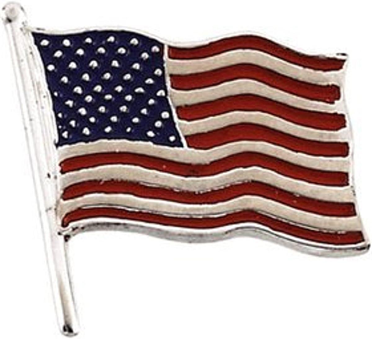 Americas /& Americas USA Flag Lapel Pin .925 Sterling Silver Large