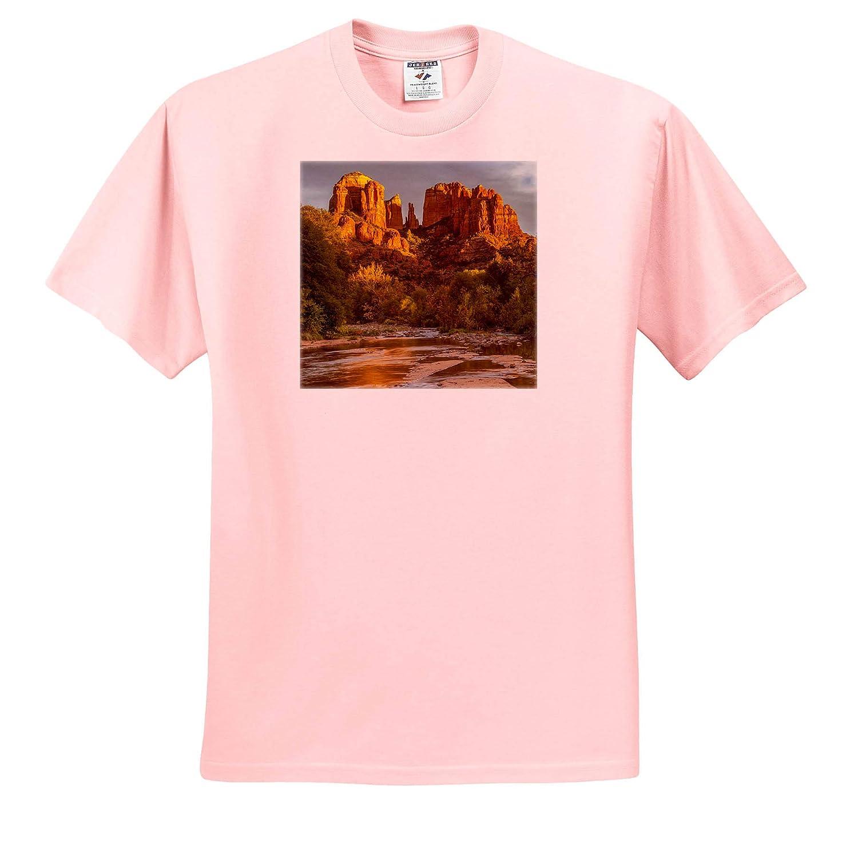 USA Arizona Sedona Adult T-Shirt XL 3dRose Danita Delimont ts/_314550 Arizona Cathedral Rock