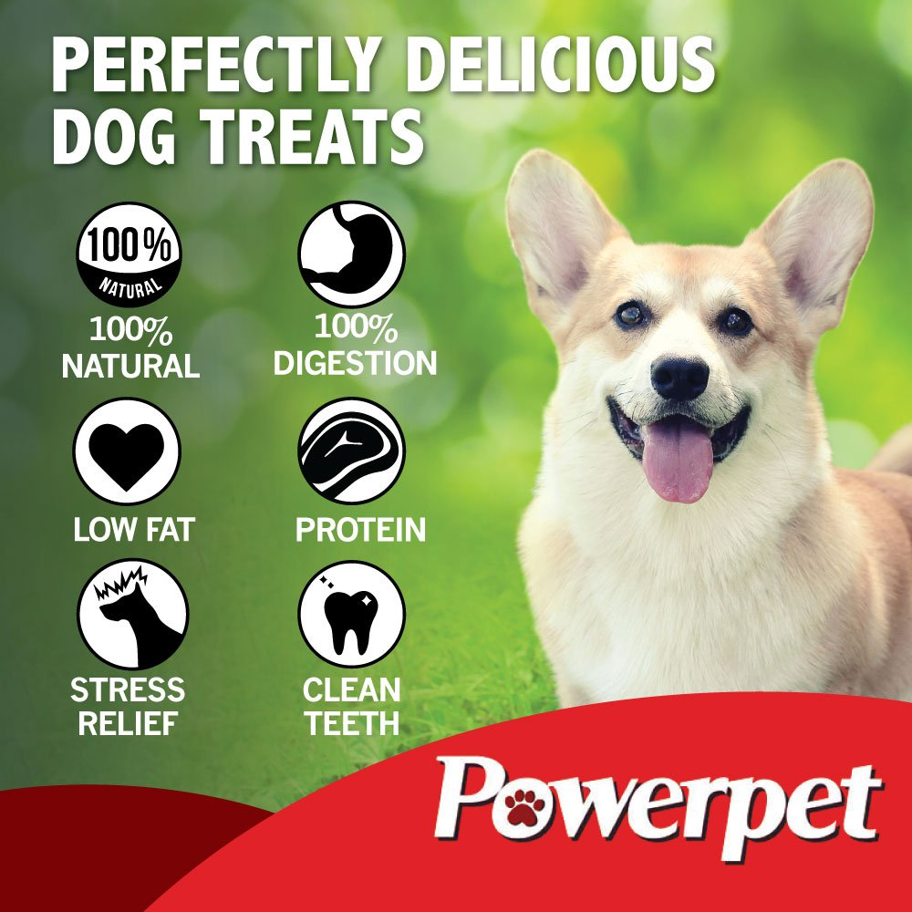 Powerpet: Beef Trachea 6in - Natural Dog Chew - Helps Improve Dental Hygiene - 100% Natural & Highly Digestible - Protein with Low Fat - Beef Jerky Dog Treat - Made from Beef Esophagus by Powerpet (Image #4)