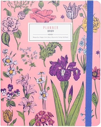 Agenda 2019/20 SV Premium Flowers 20x16 cm: Amazon.es: Oficina y ...