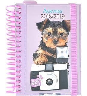 Grupo Erik Editores - Agenda escolar Studio Pets Perro 2018 ...