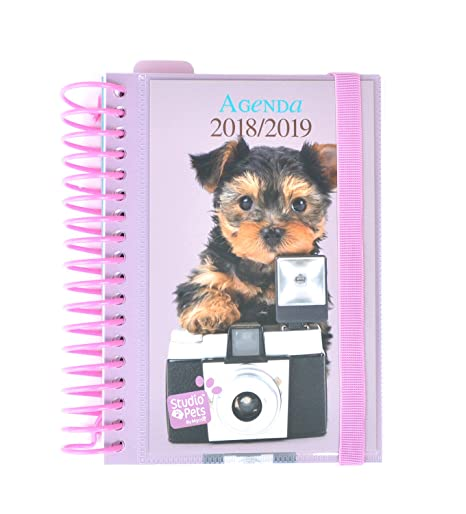 Grupo Erik Editores Studio Pets - Agenda escolar con espiral en español con diseño perro,