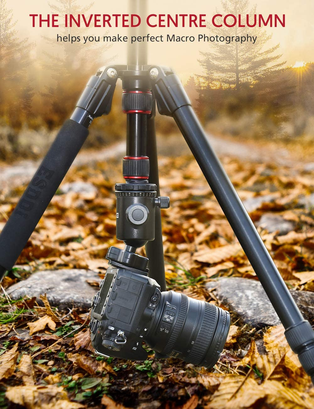 Nikon Ultra Compact and Stable for Travel and Work ESDDI Camera Tripod 79 inches Aluminum Tripod for Camera with 360/° Panorama Ball Head and Monopod Tripod for Canon DSLR Sony 17.6 Lbs Load