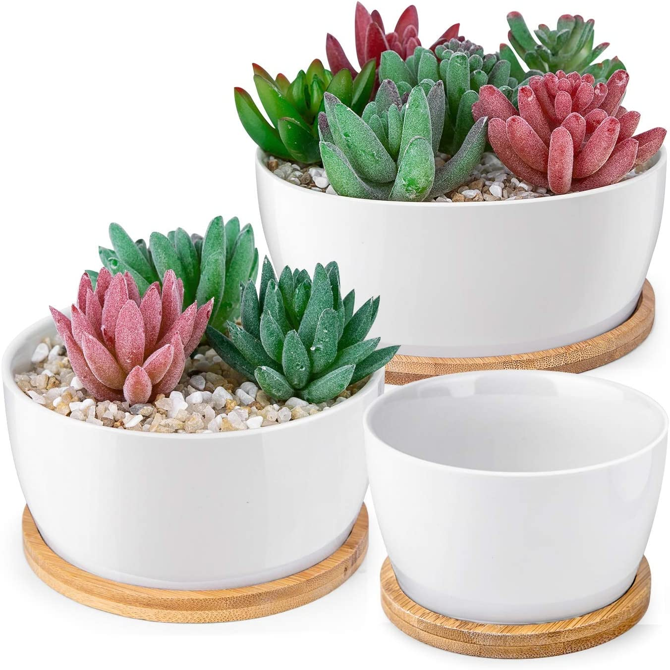 HOMENOTE 6 5 3.8 inch White Succulents Pots with Drainage Bamboo Trays Round Ceramic Succulent planters Indoor, Set of 3