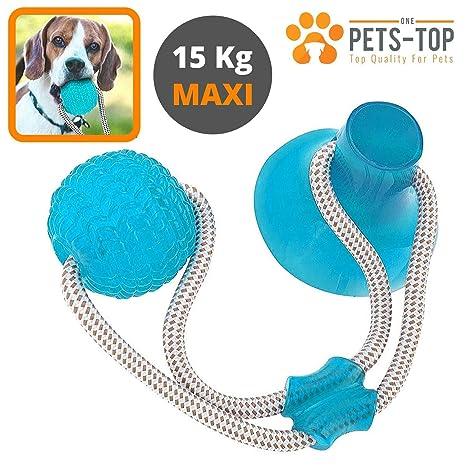 One PETS-TOP - Juguete para Perro, Cuerda interactiva, Pelota de ...