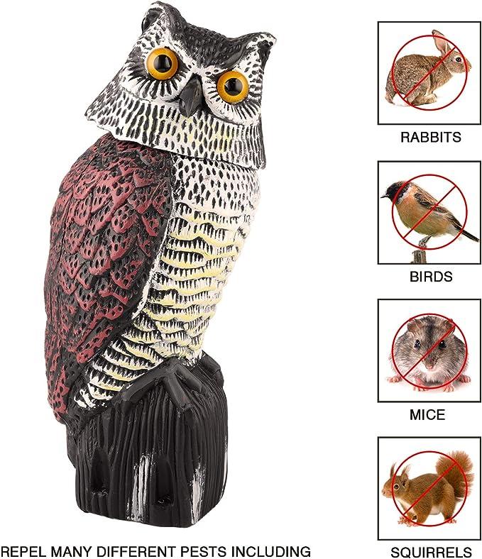 Besmon - Modelo de búho utilizado para alejar los enemigos naturales de aves y plagas (disuasorio de espantapájaros del enemigo natural) patio de jardín al aire libre: Amazon.es: Jardín
