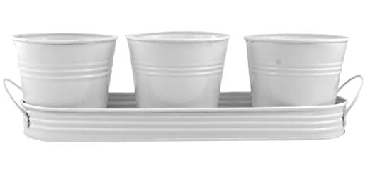 Three White Metal Planting Pails In Tray