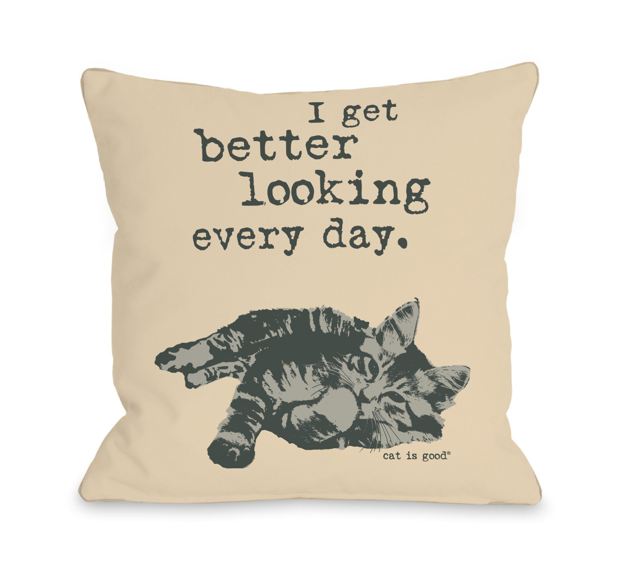 One Bella Casa Better Looking Every Day Throw Pillow by Dog is Good, 18''x 18'', Tan/Grey