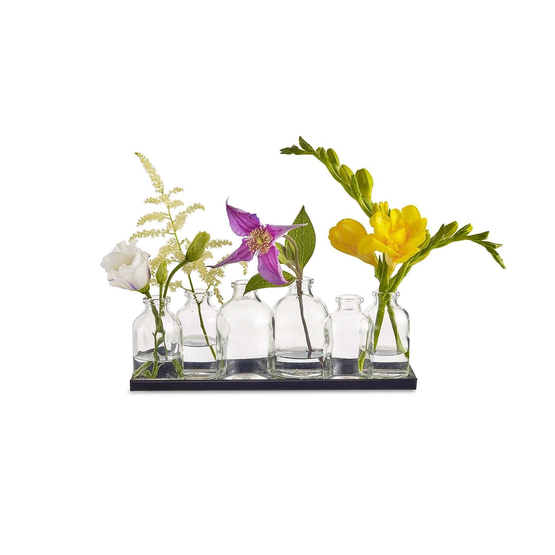 Tiny Clear Design Ideas Lil Buddy Vase