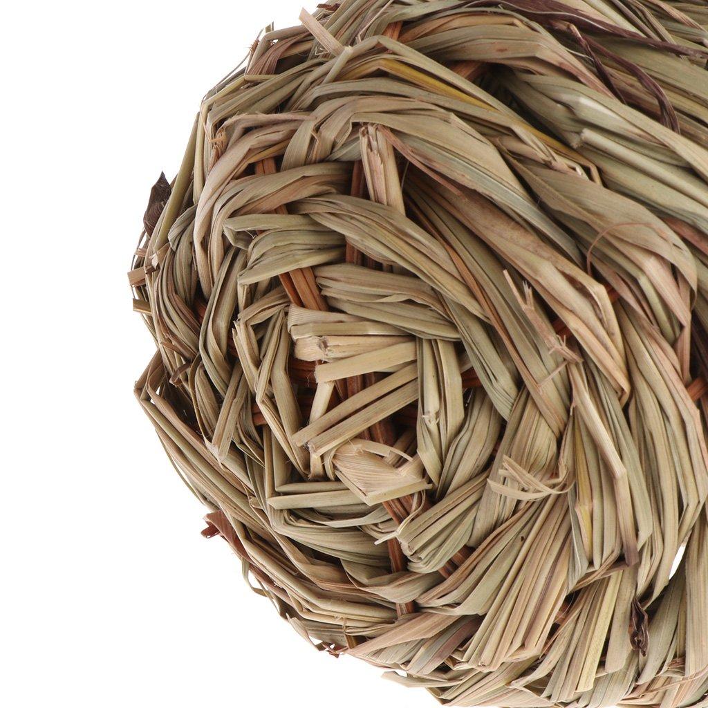 Tejida Huevera de Hierba Natural para Exteriores Lazder Birds Nest Decorativa para Colgar en la casa del Loro
