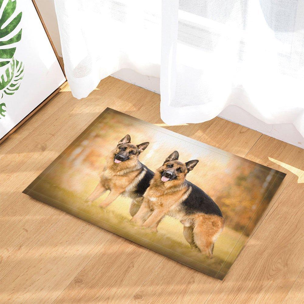 Animal Bath Rugs By GoHeBe, Two German Shepherd Dog On FieldNon-Slip Doormat Floor Entryways Indoor Front Door Mat Kids Bath Mat 15.7x23.6in Bathroom Accessories