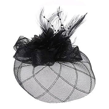 5979c39aa4a50 Amazon.com : Sixinu Womens Hair Clip Mesh Lace Barrette Fascinator Flower Pillbox  Hat Beaded Feather Hair Clip Wedding : Beauty