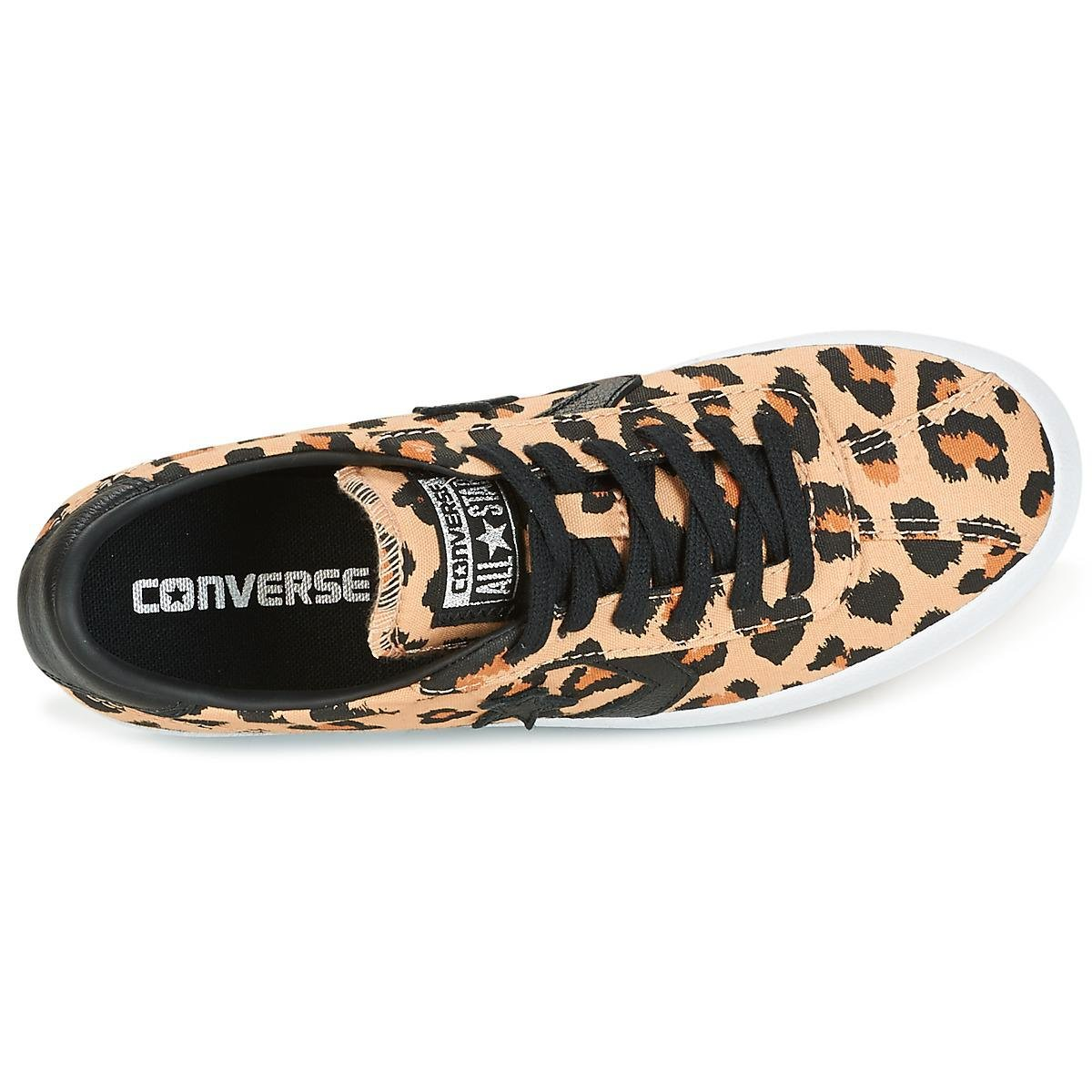 : Converse Sheet 157797C Camel: Shoes