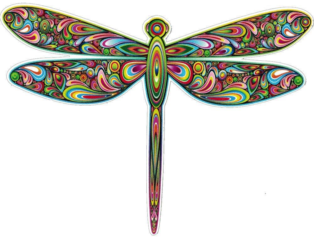 Unique Bright 5 X 4 Dragonfly Bumper Sticker // Decal