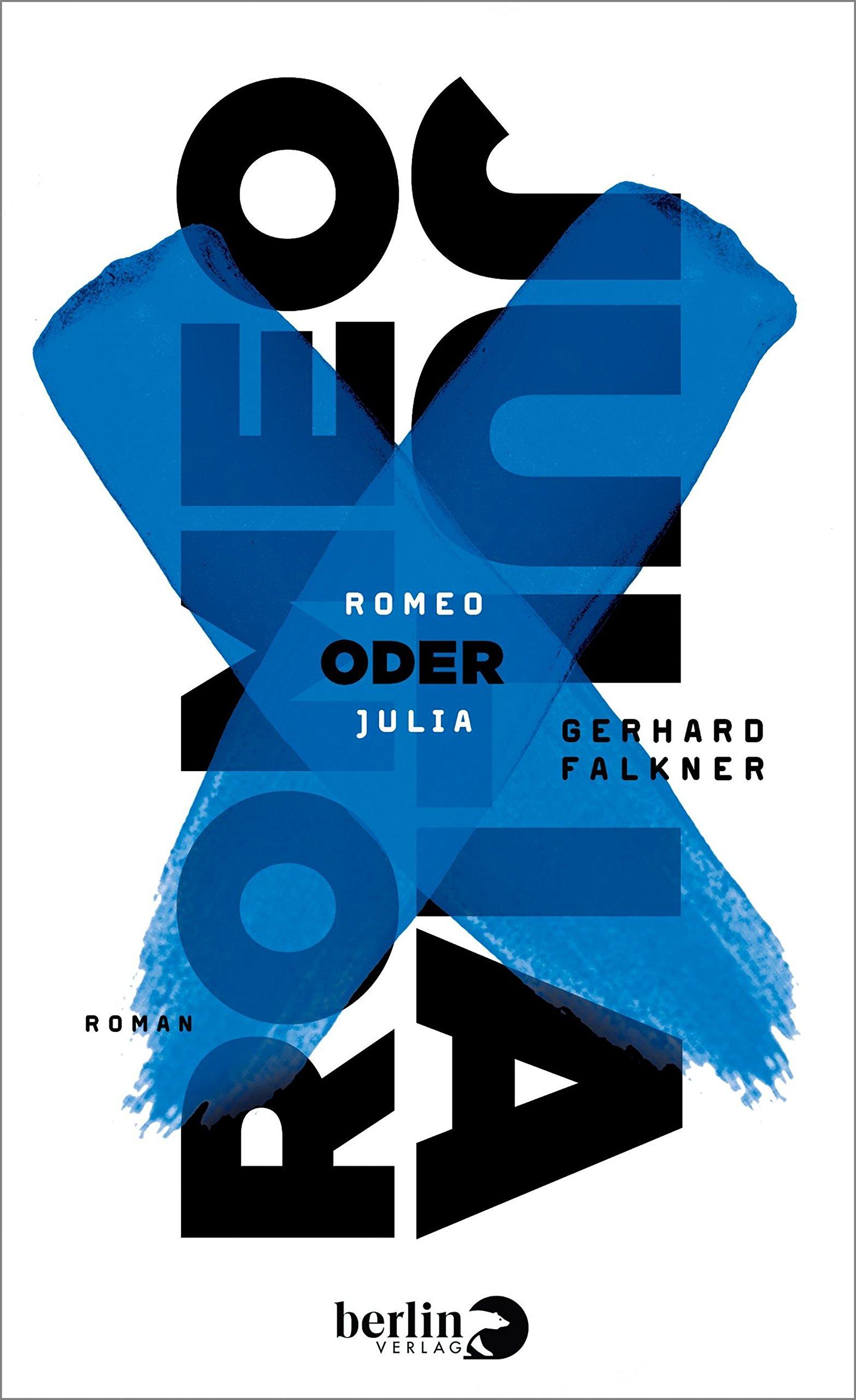 Romeo oder Julia: Roman