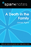 A Death in the Family (SparkNotes Literature Guide) (SparkNotes Literature Guide Series)